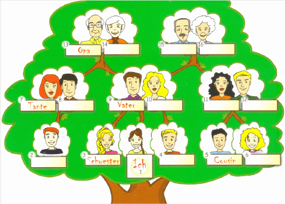 Fill In Family Tree New the Gap Fill Exercises with the Family Tree