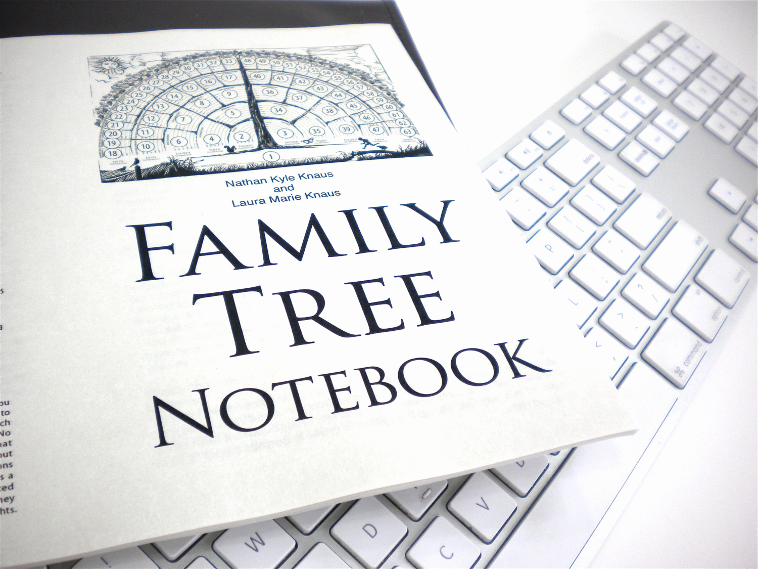 Fill In Family Tree Unique Family Tree Notebook Ebook Pdf Fill In Blank Template Ts