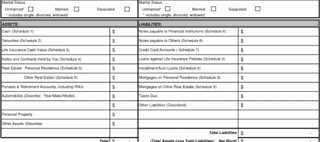 Fillable Personal Financial Statement Unique Fillable Personal Financial Statement Free