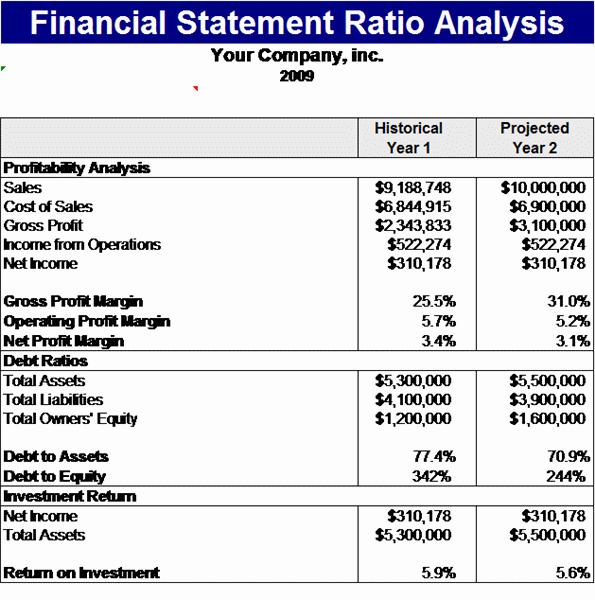 Financial Statement Analysis Example Luxury Financial Statement Ratios Analysis Template