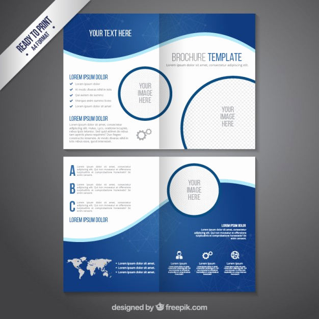 Flyer Templates Free Downloads Lovely Brochure Template In Blue tones Vector