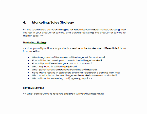 Free Business Plan Template Word Unique Sample Sales Plan 15 Example format