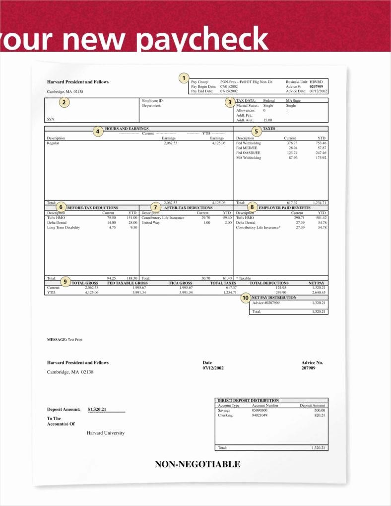 Free Check Stub Template Elegant 9 Free Check Stub Templates Free Pdf Doc format