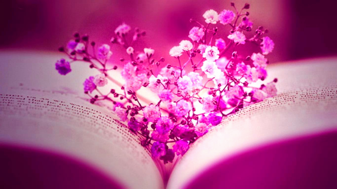 Free Cover Photos for Facebook Beautiful Cover Flower Pink