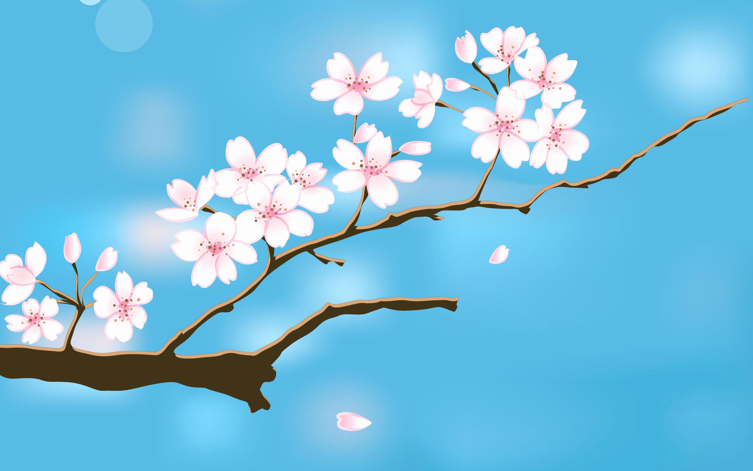 Free Flower Wall Paper Elegant Spring Background Free