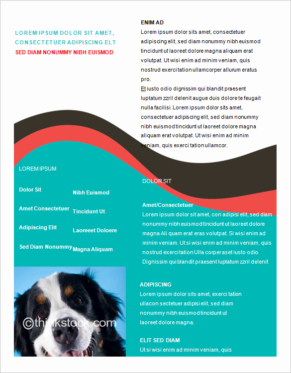Free Flyer Templates for Word Unique Microsoft Brochure Template 49 Free Word Pdf Ppt