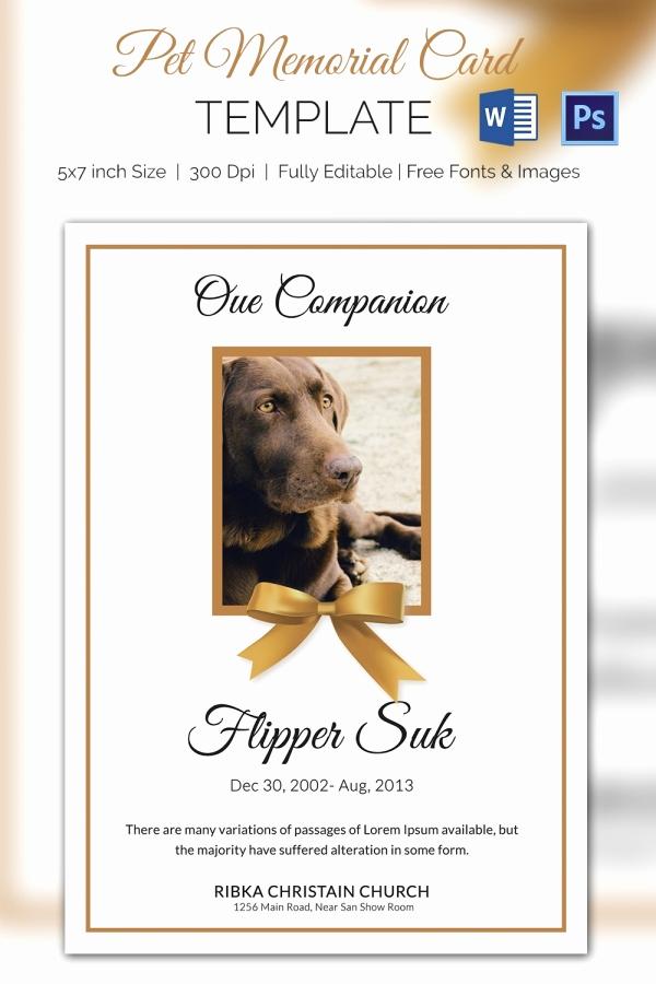 Free Memorial Card Template Best Of Pet Memorial Card 5 Word Psd format Download