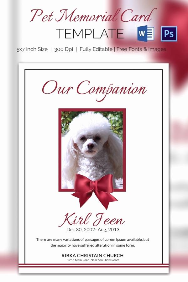 Free Memorial Card Template Fresh Pet Memorial Card 5 Word Psd format Download