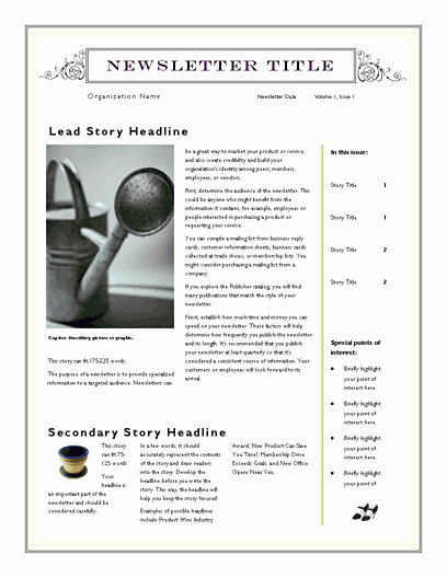 Free Newsletter Templates Word Best Of Free Newsletter Template for Word 2007 and Later