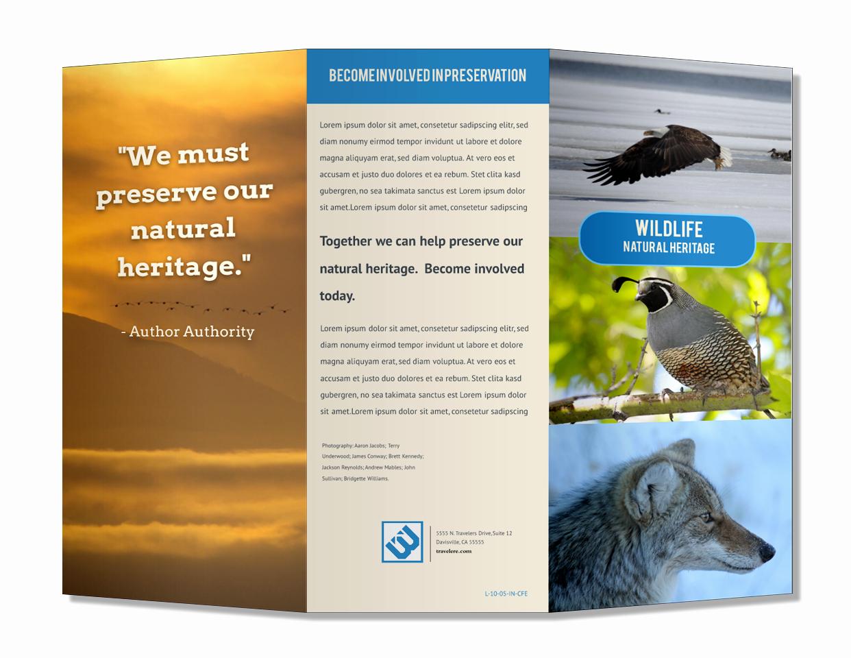 Free Online Brochure Maker New Free Brochure Maker Line