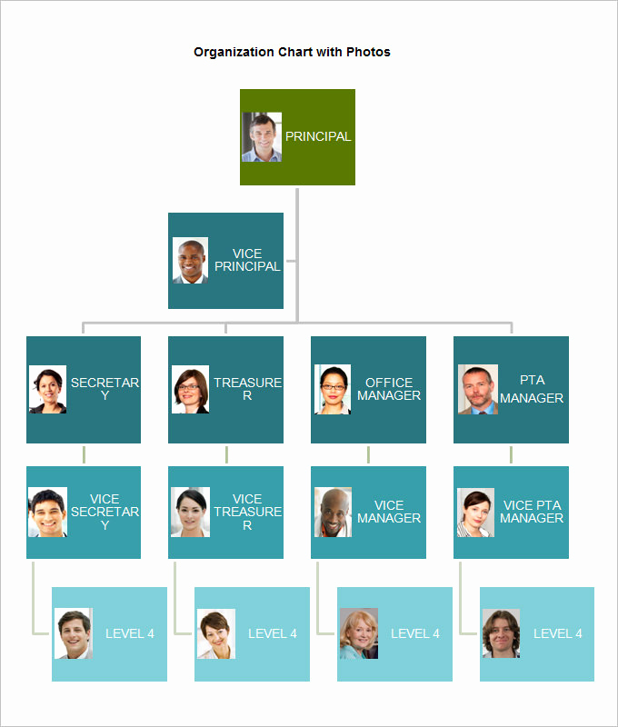 Free org Chart Template Awesome organizational Chart Template 10 Free Word Excel Pdf