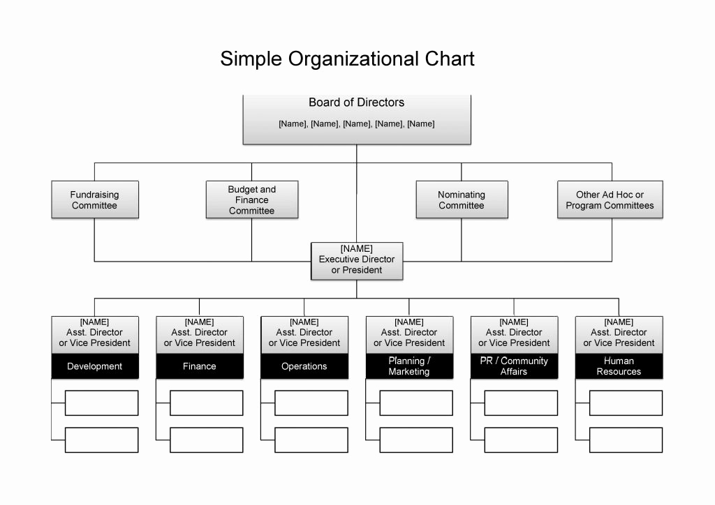 Free organizational Chart Template Awesome 25 Best Free organizational Chart Template In Word Pdf Excel