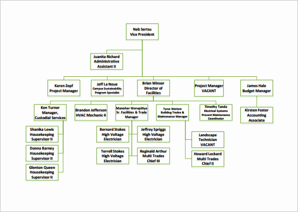 Free organizational Chart Template Best Of organizational Chart Template – 9 Free Sample Example