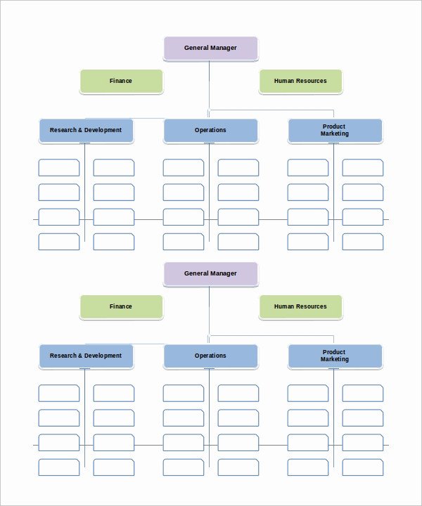 Free organizational Chart Template Elegant organizational Chart Template 13 Download Free