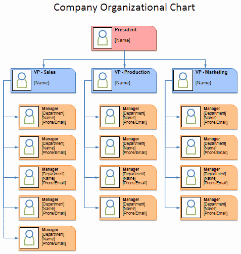 Free organizational Chart Template Unique Free organizational Chart Template Pany organization