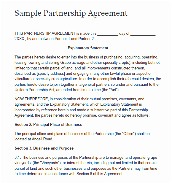 Free Partnership Agreement form Luxury 8 Sample Partnership Agreements
