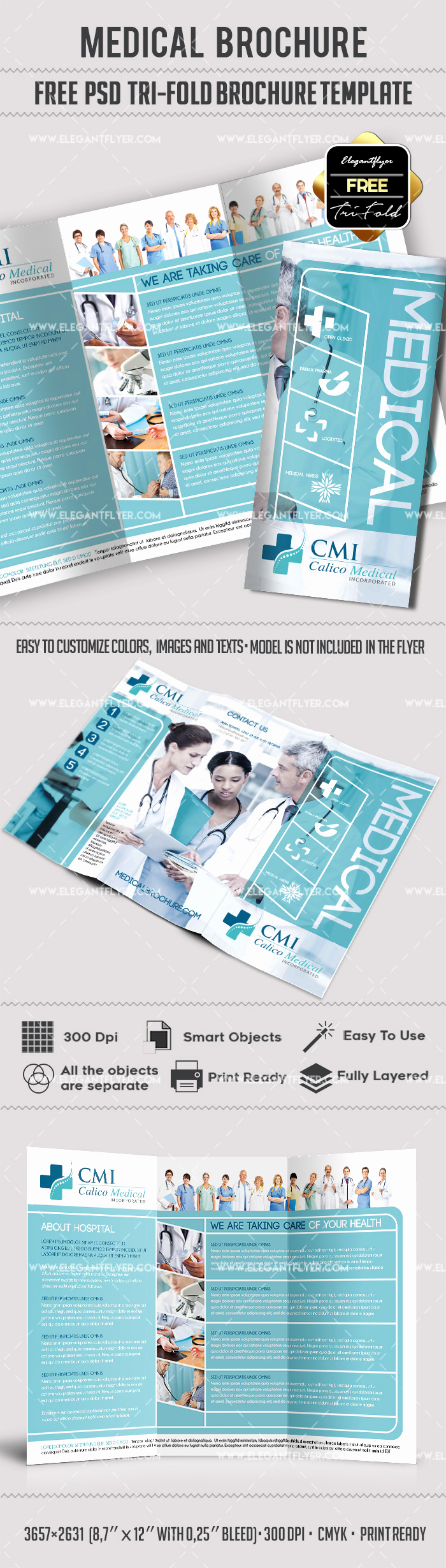 Free Printable Brochure Templates Fresh Medical Tri Fold Brochure Template Free – by Elegantflyer