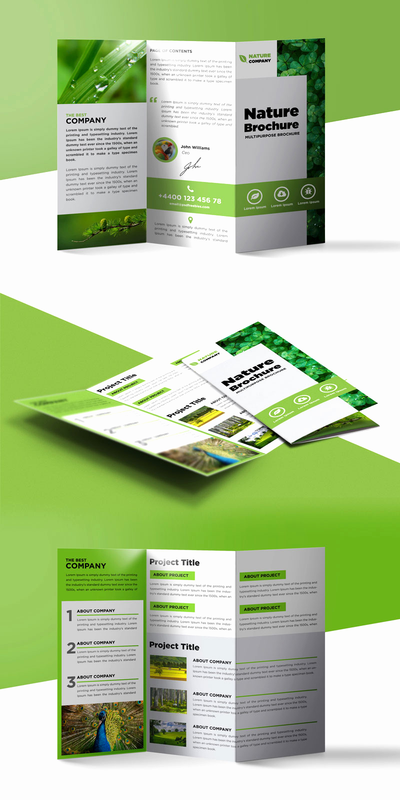 Free Printable Brochure Templates Unique Nature Tri Fold Brochure Template Free Psd