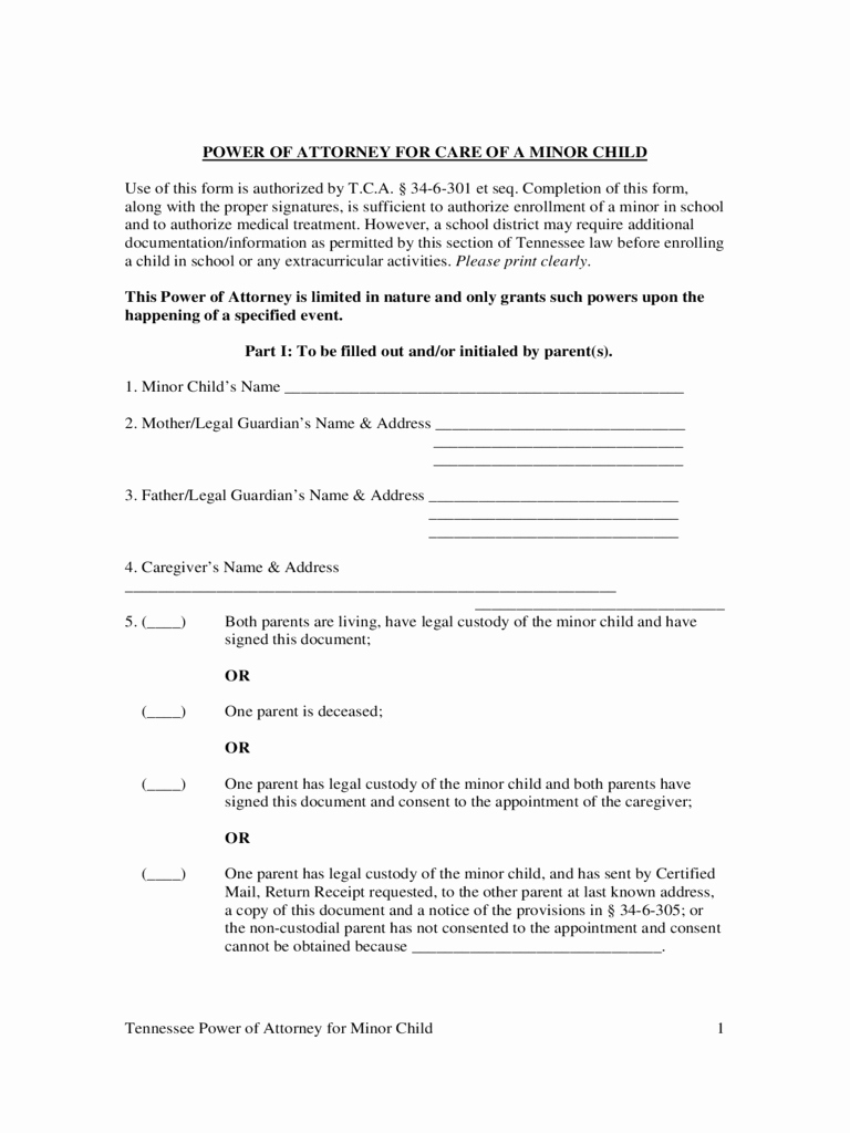 child custody form