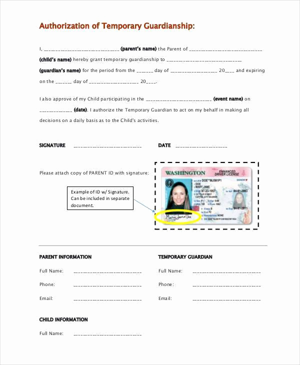 Free Printable Child Guardianship forms Lovely Temporary Guardianship form Free Download the Best