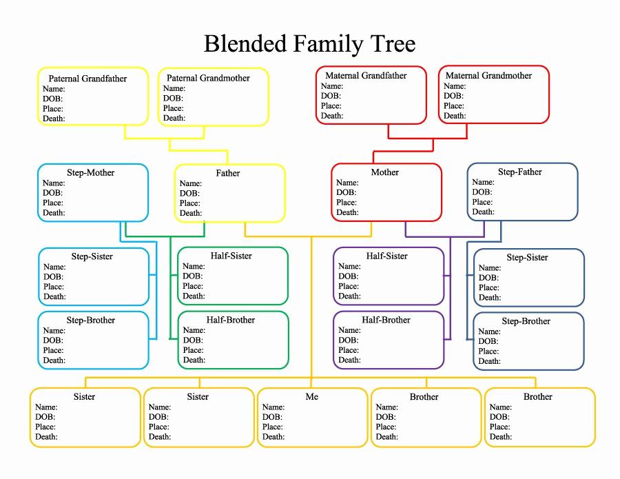 Free Printable Family Tree Elegant 40 Free Family Tree Templates Word Excel Pdf
