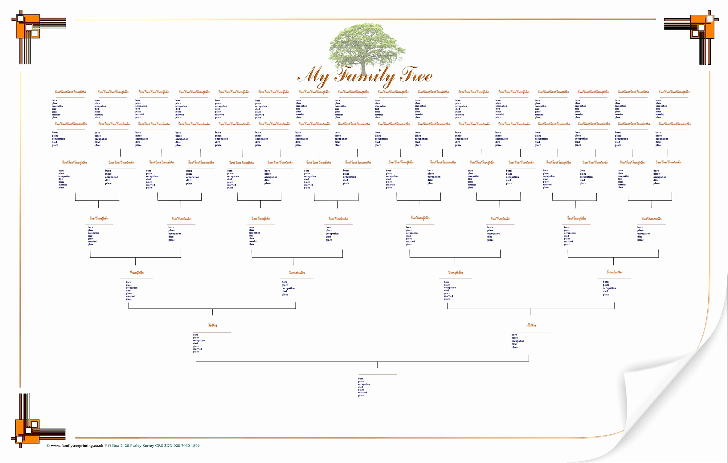 Free Printable Family Tree Elegant Blank Family Tree Chart Geneology