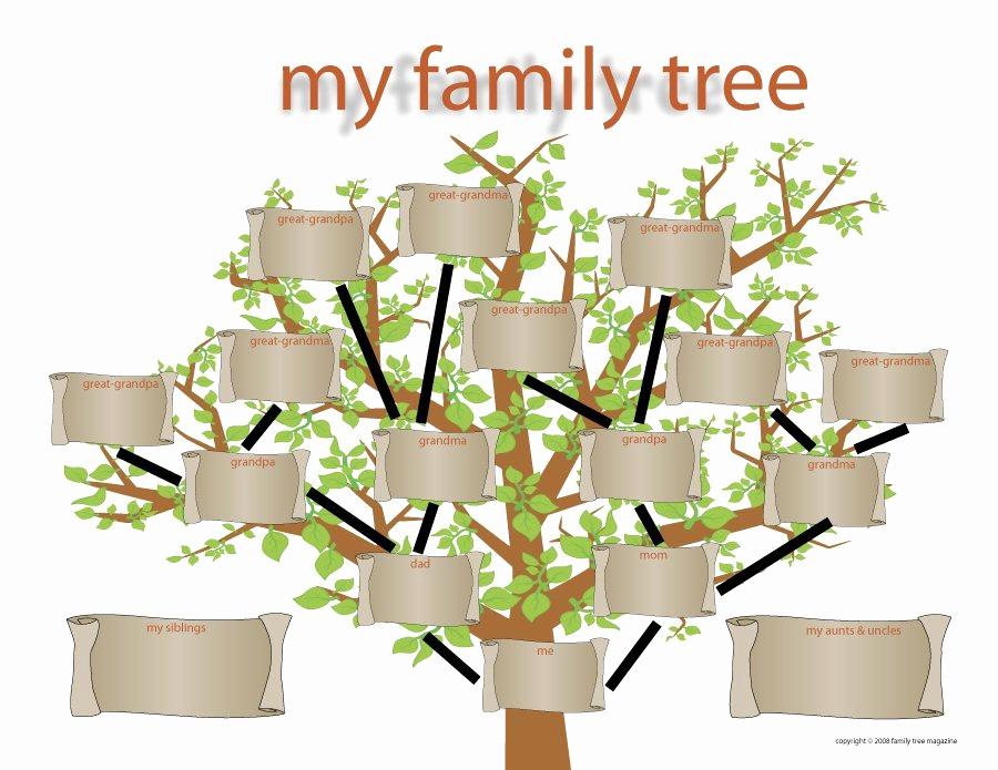 Free Printable Family Tree Inspirational 50 Free Family Tree Templates Word Excel Pdf