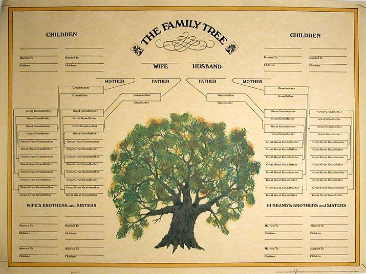 Free Printable Family Tree New Family Tree Template Blank Family Tree