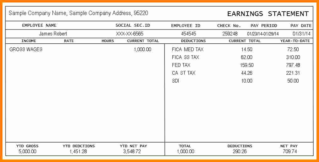 Free Printable Pay Stubs Online New 12 Paystub Example