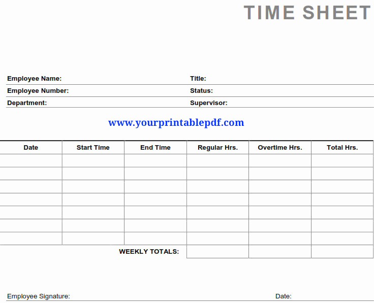 Free Printable Time Sheets Pdf Best Of Printable Pdf Timesheets for Employees