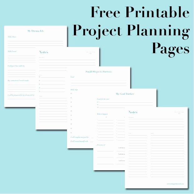 Free Project Plan Template Awesome Best 20 Project Planner Ideas On Pinterest