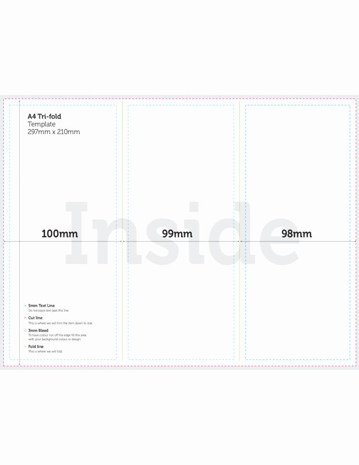 Free Tri Fold Brochure Template Best Of A4 Tri Fold Brochure Template Csoforumfo