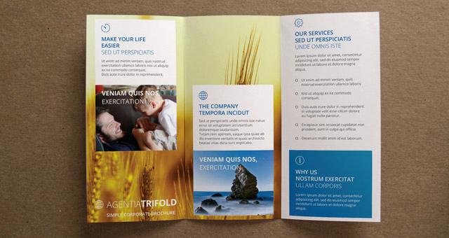 Free Tri Fold Brochure Template New Agentia Tri Fold Brochure Template