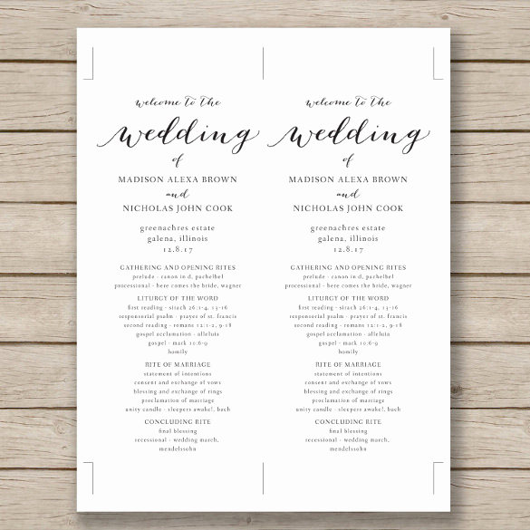 Free Wedding Program Templates Word Awesome Wedding Program Template 41 Free Word Pdf Psd