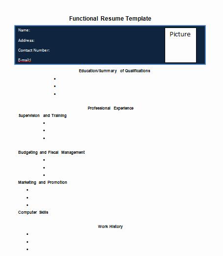 Functional Resume Template Word Elegant Blank Functional Resume Template