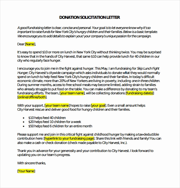 Fund Raising Letter Templates New 29 Donation Letter Templates Pdf Doc