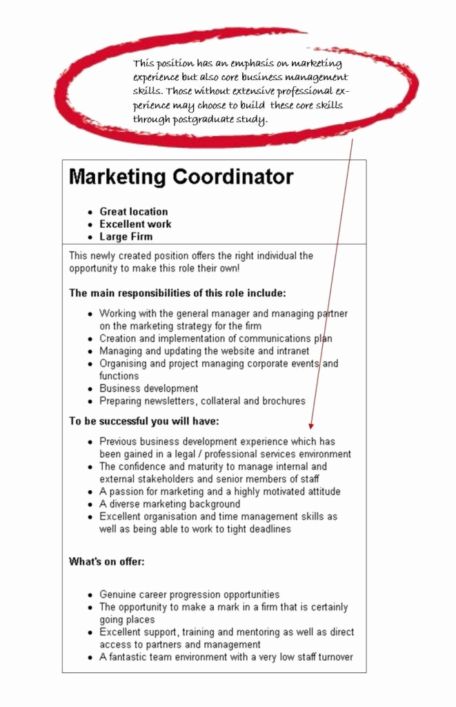 Generic Objective for Resume Awesome Best 25 Resume Objective Examples Ideas On Pinterest