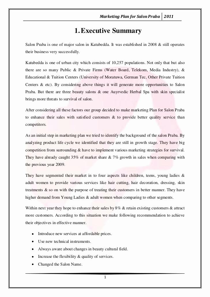 Hair Saloon Business Plan Lovely Marketing Plan for Salon Praba