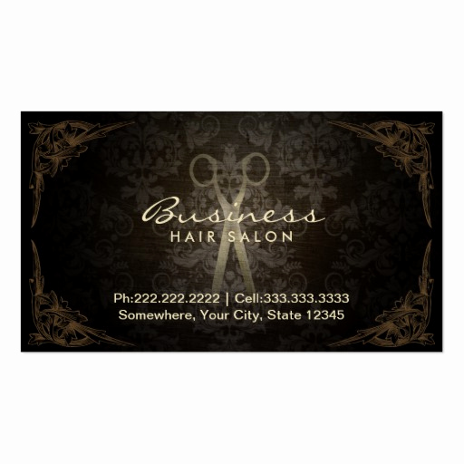Hair Stylist Business Cards Lovely Vintage Framed Damask Hair Salon Appointment Business Card