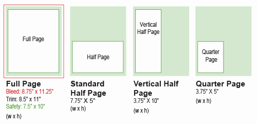 Half Page Flyer Template Unique Half Page Flyer Template