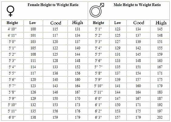Height and Weight Chart Army Elegant Army Weight Standards Google Search