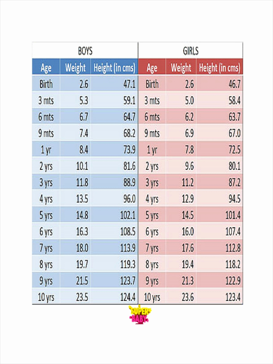 Height to Weight Ration Chart Fresh 7 Height and Weight Chart Examples Samples