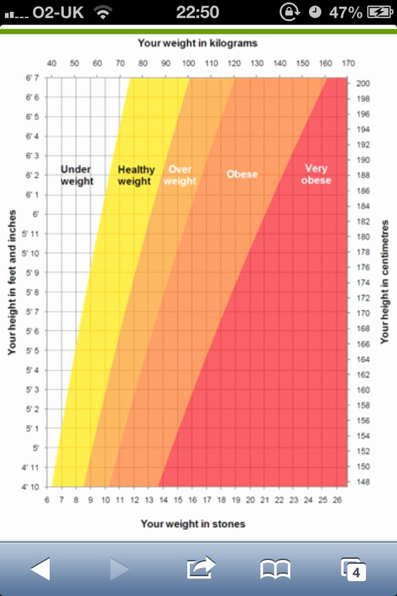 Height to Weight Ration Chart Lovely Weights On Pinterest