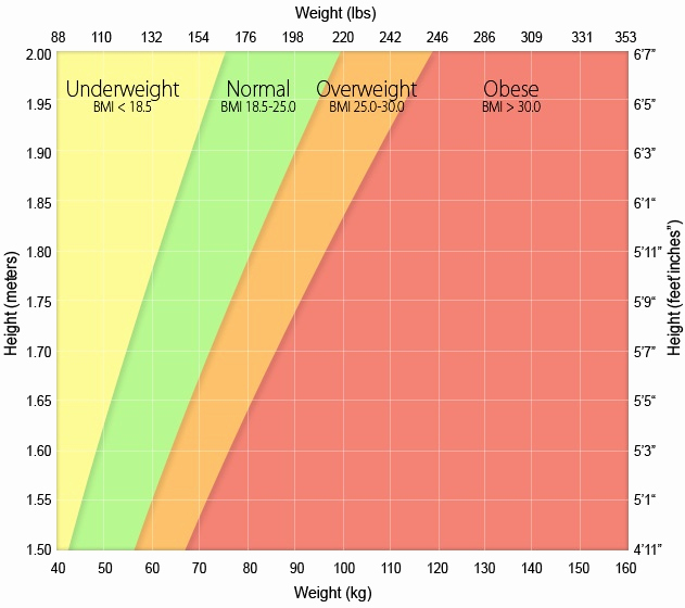 Height to Weight Ration Chart Luxury Best 25 Height Weight Charts Ideas On Pinterest