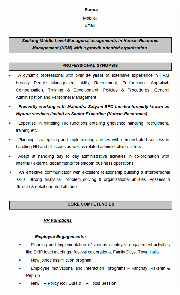 Human Resources Manager Resume Awesome 21 Hr Resume Templates Doc