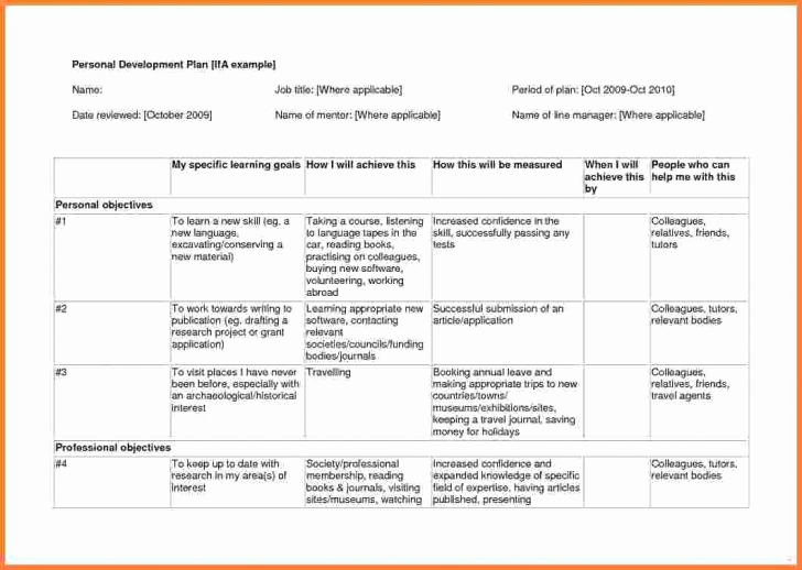 Individual Development Plan Examples Awesome 9 Individual Development Plan Examples for It