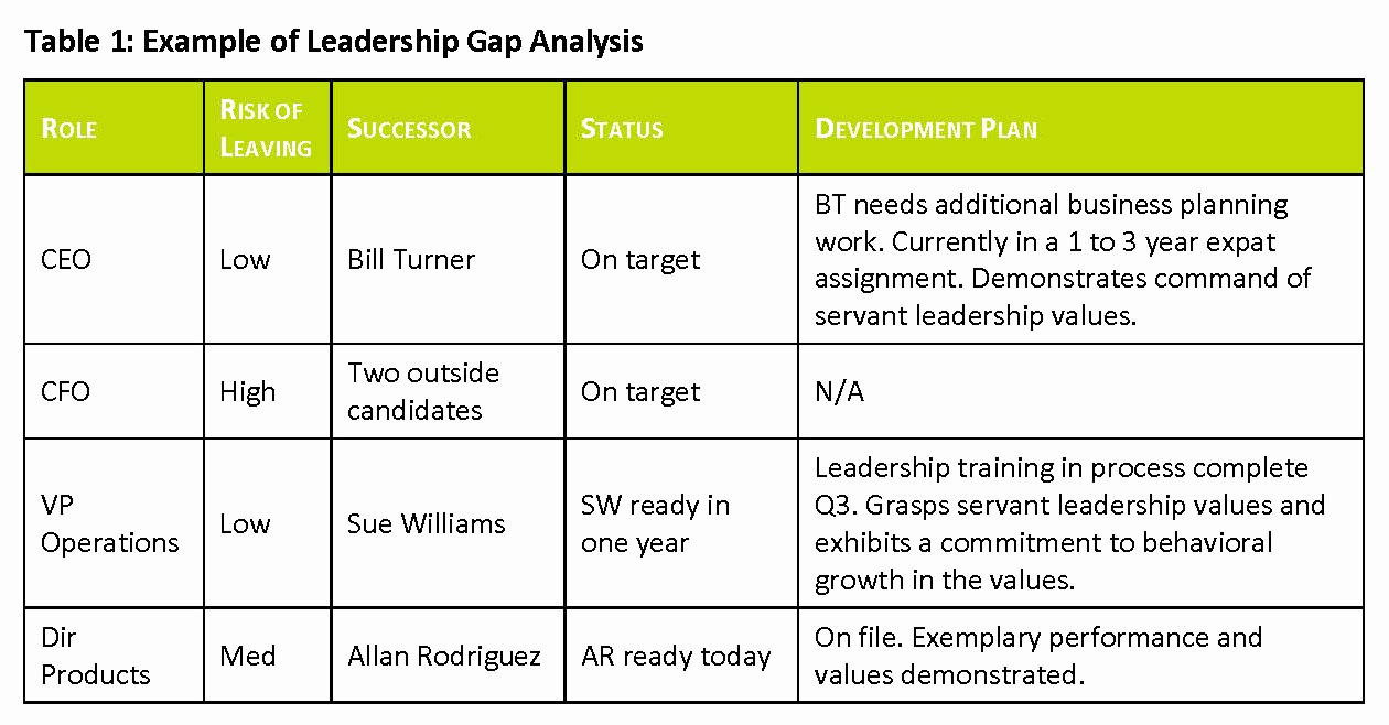 Leadership Development Plan Example Lovely Succession Planning