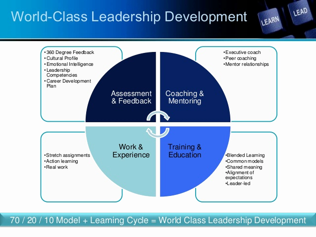 Leadership Development Plan Example Unique Guiding Principles Of Leadership Development