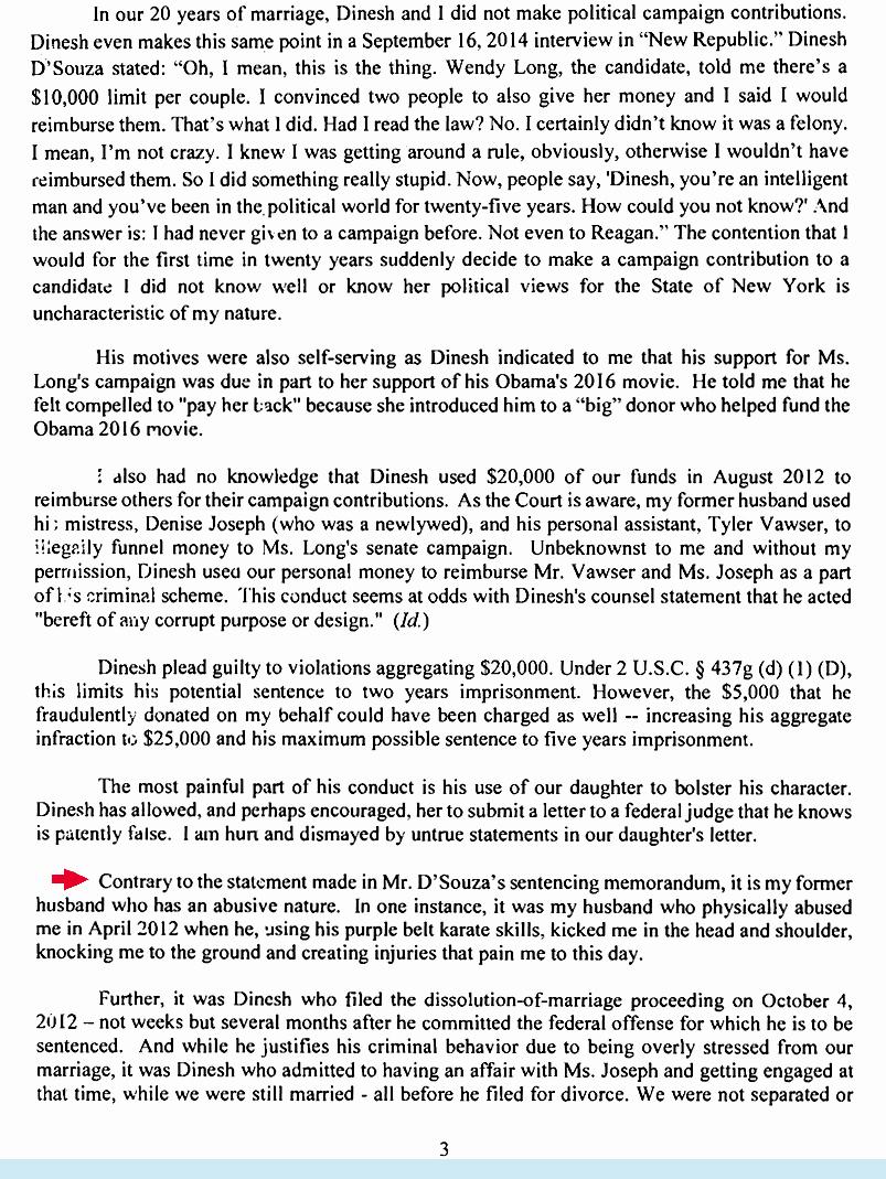 Letter to My Husband Elegant Dinesh D'souza Avoids Jailtime Despite Letter From