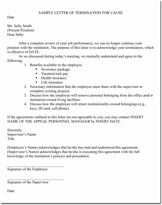 Letters Of Termination Of Employment New Job Termination Letters for Cause & without Cause Sample